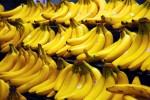 «Банановый рай». Российский рынок бананов