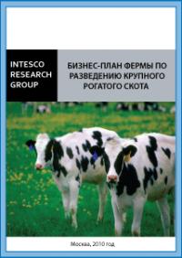 Бизнес-план фермы по разведению крупного рогатого скота