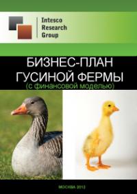 Бизнес-план гусиной фермы (с финансовой моделью)