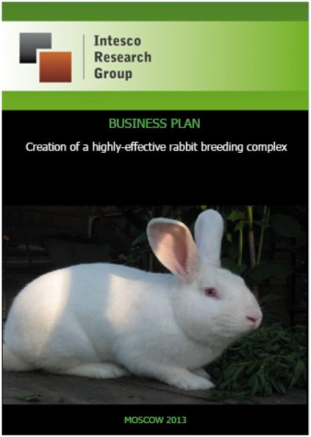 Creation of a highly-effective rabbit breeding complex in Smolensk Region