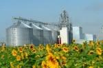 Строительство элеваторного комплекса для хранения и отгрузки зерна