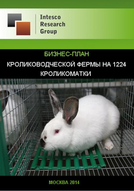 Создание кролиководческой фермы